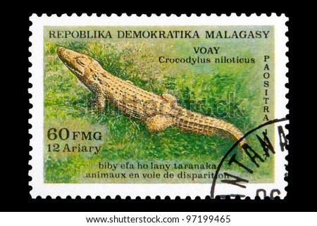 "MALAGASY REPUBLIC - CIRCA 1987: A Stamp printed in Malagasy Republic (Madagascar) shows a Nile crocodile with inscription ""Crocodylus niloticus"", series ""Endangered Species"", circa 1987 - stock photo"