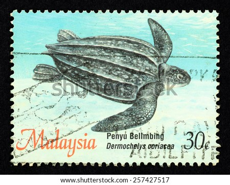 MALAYSIA - CIRCA 1995: Blue color postage stamp printed in Malaysia with image of a leatherback sea turtle (Dermochelys coriacea) for the Turtle of Malaysia series. - stock photo