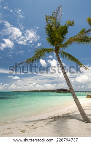 Maldives beach view with clear blue water and white sand . - stock photo
