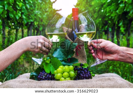 Male and female hand with a glass of wine on the background of the vineyard. - stock photo