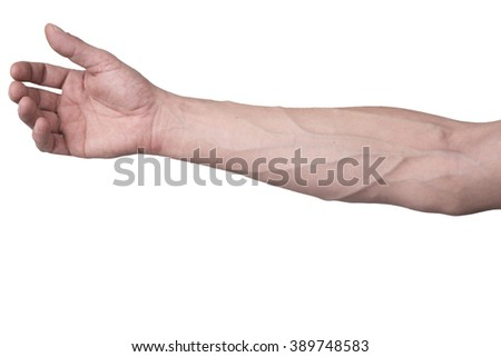 Male arm with veins - stock photo