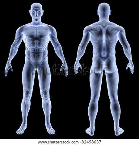 male body under X-rays. without the skeleton. isolated on black - stock photo
