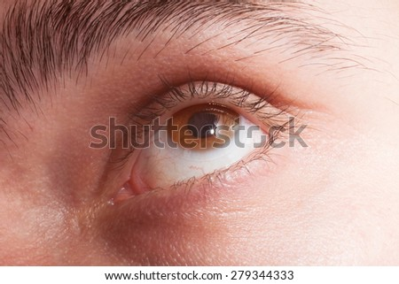 Male brown eye with contact lens macro - stock photo
