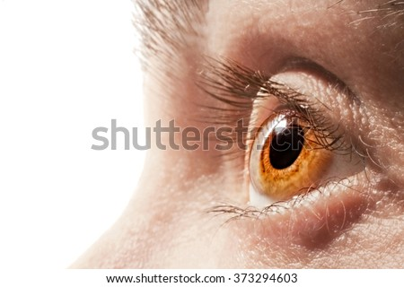 Male honey-colored eye isolated on a white background - stock photo