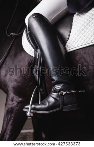 Male horse rider preparing horse for the riding - install and check the equipment. Unrecognizable. Concept of animal loving and having hobby - stock photo