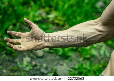 Male muscular arm with visible veins outdoor in green grass background closeup - stock photo