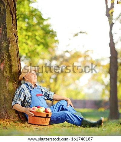Male worker in overalls with basket of harvested apples sitting in orchard, shot with a tilt and shift lens - stock photo