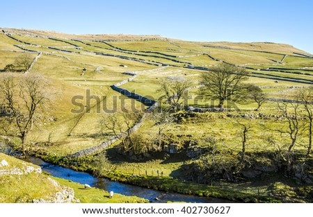 Malham Beck surrounded by fields - stock photo