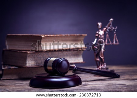 Mallet of justice! Concept of law. Studio shots - stock photo