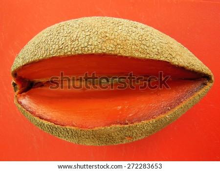 Mamey sapote fruit on orange cutting board - stock photo