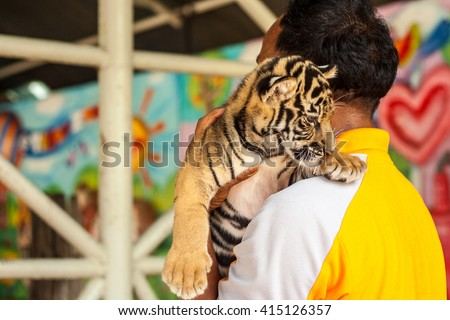 man carrying baby tiger. - stock photo