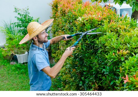 Man cuts bushes with clippers near the house - stock photo