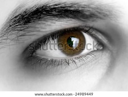 man eye - stock photo