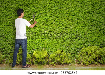 Man gardener cut with clippers - stock photo