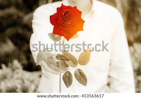 Man giving a red roses with sepia colorizing - stock photo