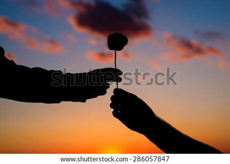 Man giving woman a rose. - stock photo
