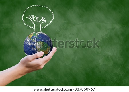 man hand holding world with tree draw on chalkboard background.give knowledge/education to poverty population concept idea:support,improve,development ability:Elements of this image furnished by NASA - stock photo