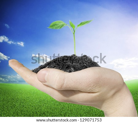 man hands holding a green young plant on nature background - stock photo