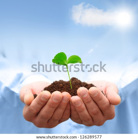 Man hands holding green plant. Ecology concept - stock photo