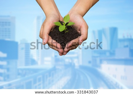 man hands holding the young little growing plant over blurred of city metro backgrounds:carbon credits responsible conception.safe/save the world ecology system concept.clean energy ideal conceptual. - stock photo