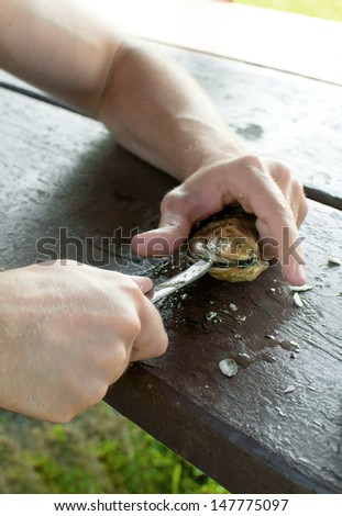 Man hands shucking oysters on picnic table outside - stock photo