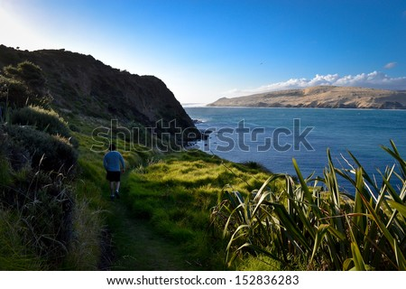 Man hiking in Omapere, New Zealand - stock photo