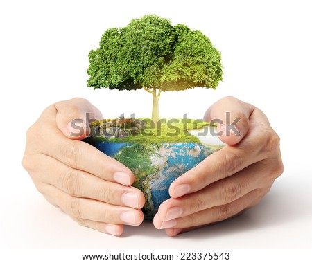 Man holding Tree in hand - stock photo