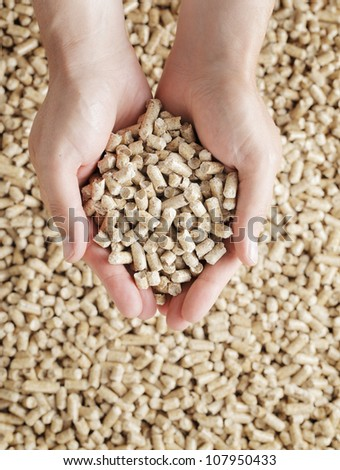 Man holding Wood Pellets (used as fuel) in his hands. - stock photo