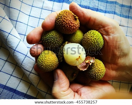 Man holds fresh lychees, one peeled - stock photo