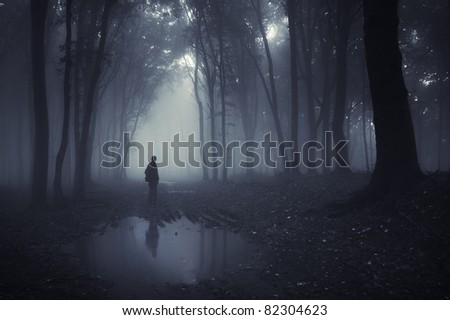 man in a forest with pond and fog after rain - stock photo