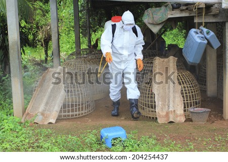 man in an overall plucking the feathers of a bird's corpse and putting them in a plastic bag to be analysed for bird flu - stock photo