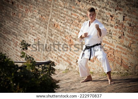 Man in karate stance with black belt in front of a brick wall - stock photo