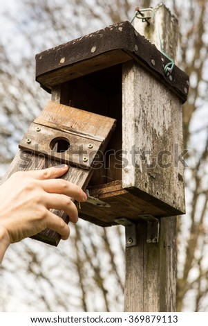 man is opening a birdhouse, to look in it - stock photo