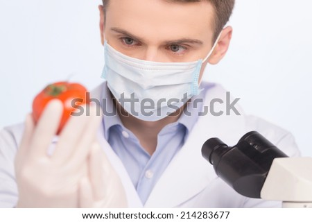 man looking at tomato and wearing mask. Cell culture assay to test genetically modified vegetable - stock photo