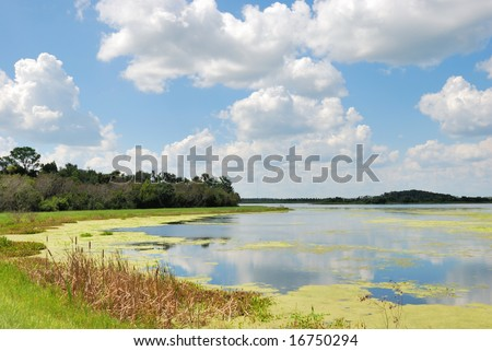 Man made Wetlands #2 - Orlando Wetlands Park - stock photo