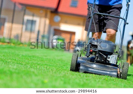 Man mowing the lawn. Gardening - stock photo