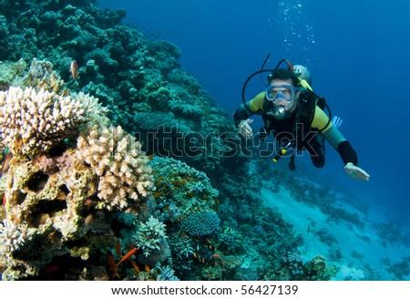 man on a dive in scuba gear - stock photo