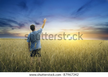 Man on yellow wheat meadow. Conceptual design. - stock photo