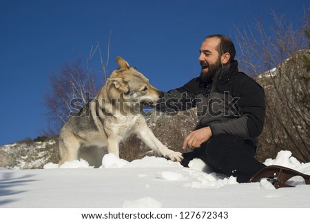 Man playing with Czechoslovakian wolf dog - stock photo
