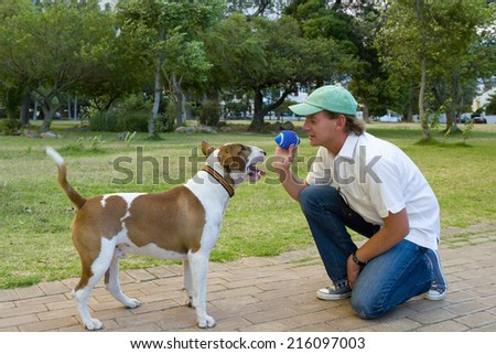 Man playing with dog in park, side view - stock photo