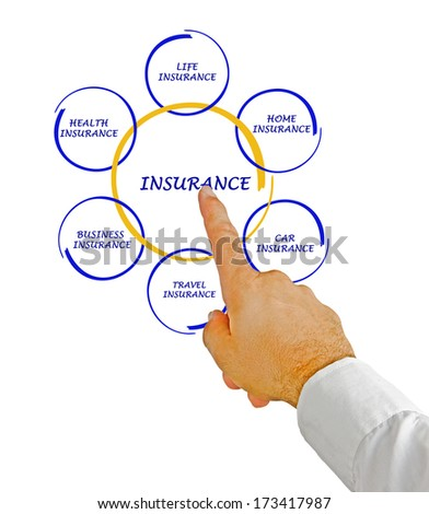 man presenting insurance diagram - stock photo