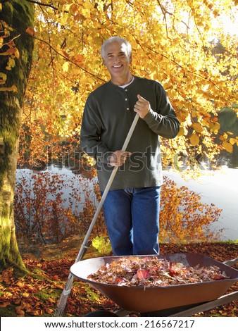 Man raking autumn leaves at edge of lake - stock photo