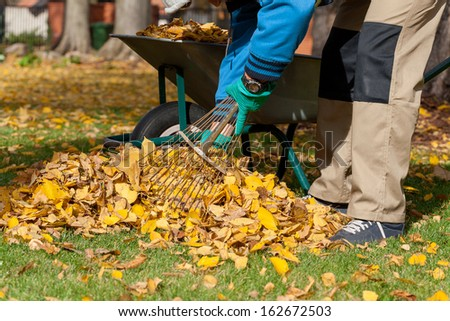 Man raking the leaves in the yard - stock photo