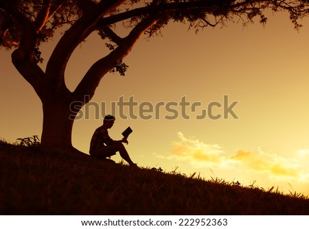 Man reading in the park - stock photo