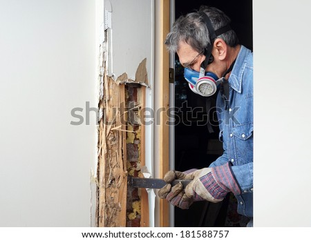 Man removing wood damaged by termite infestation in house. - stock photo