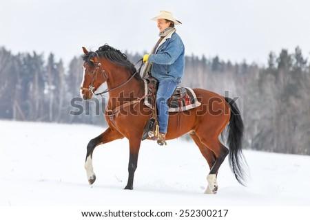 Man riding a bay stallion in winter landscape. - stock photo