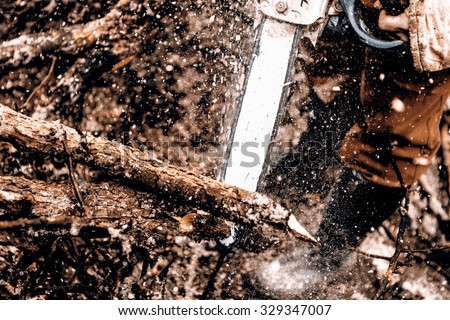 Man sawing a log in his back yard with saw - looks like jungle - stock photo