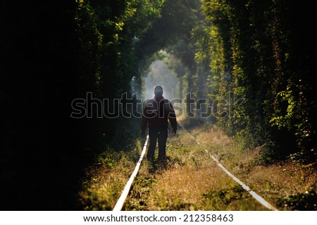 Man silhouette in natural tunnel of love formed by trees in Romania,Glimboca - stock photo