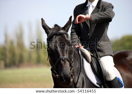 Man sit on horse and looking on clock , dressage - stock photo
