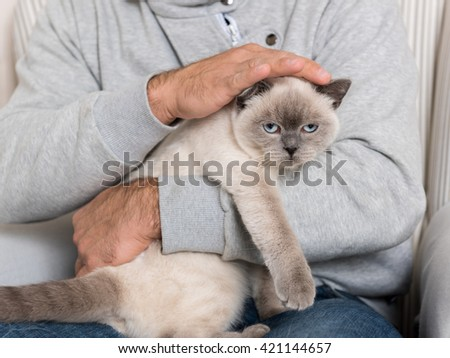 Man sitting in an armchair, holding his gorgeous pet cat - stock photo